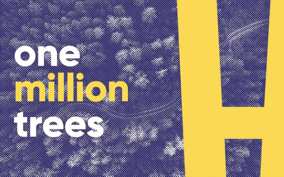 honest mobile is planting one million trees with treesisters 🌳