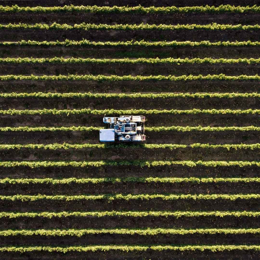 Brids eye view of field with biochar being spread
